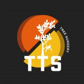 TTS Tree Surgery